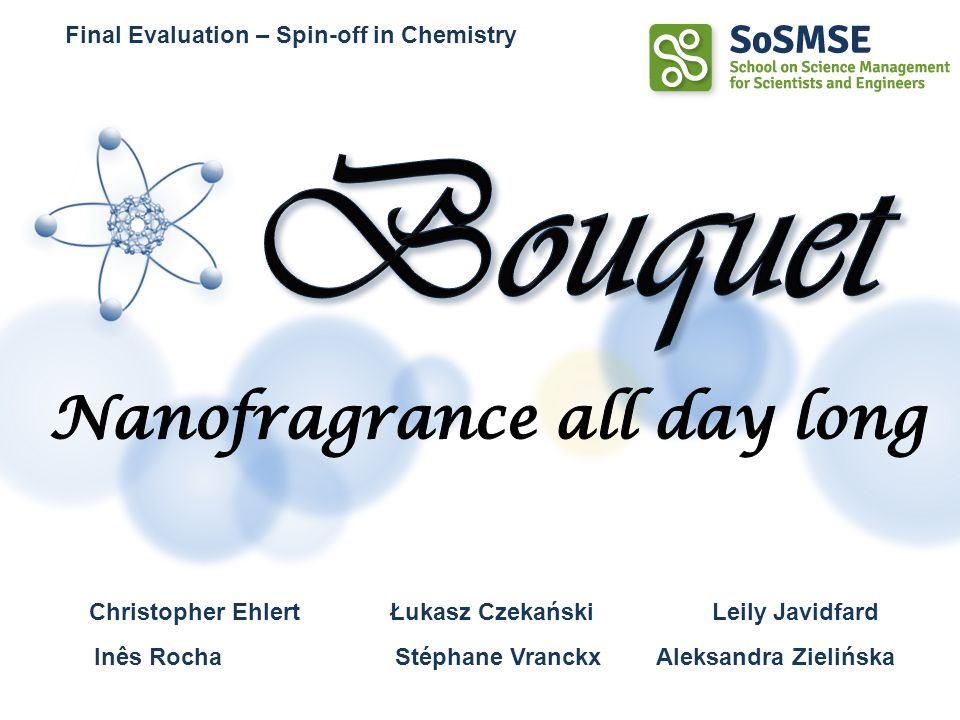 We thank all those who helped us build and improve this project through constructive discussion: –Salvatore Majorana –Cristina Freire –All professors of the SoSMSE school Acknowledgments