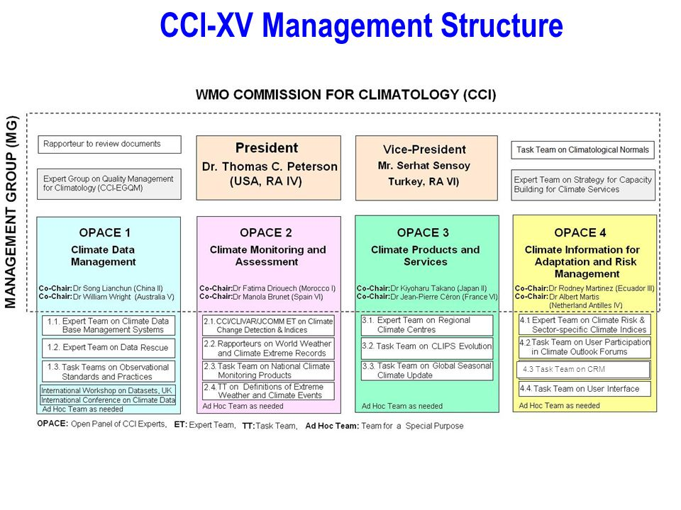 CCl-XV Management Structure 4.3 Task Team on CRM