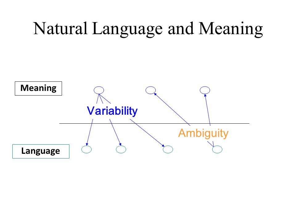 Natural Language and Meaning Meaning Language Ambiguity Variability