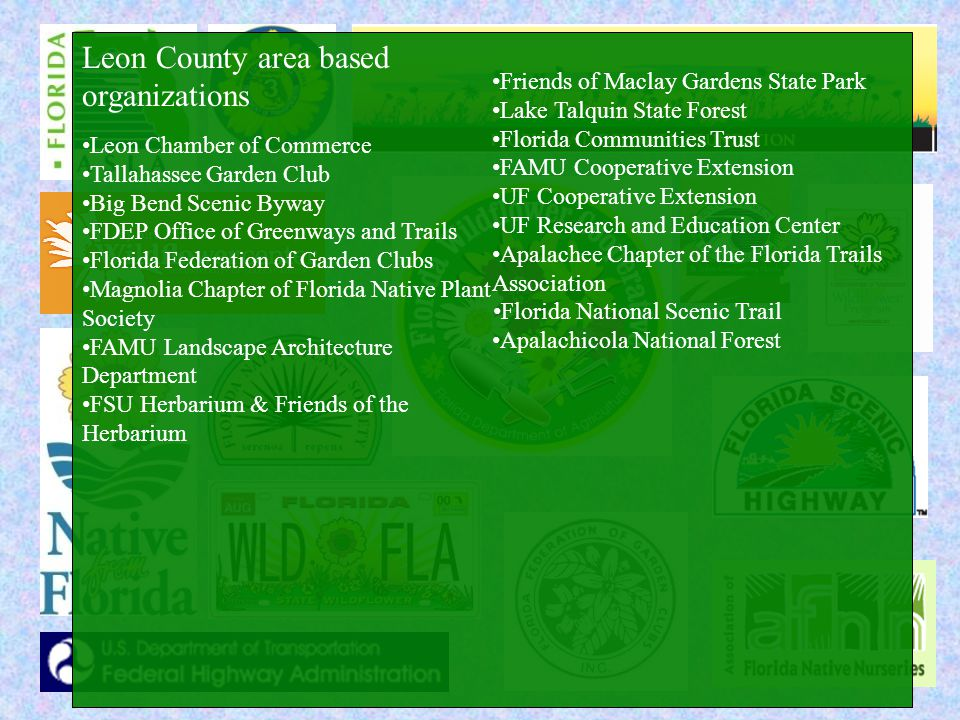 Leon County area based organizations Leon Chamber of Commerce Tallahassee Garden Club Big Bend Scenic Byway FDEP Office of Greenways and Trails Florida Federation of Garden Clubs Magnolia Chapter of Florida Native Plant Society FAMU Landscape Architecture Department FSU Herbarium & Friends of the Herbarium Friends of Maclay Gardens State Park Lake Talquin State Forest Florida Communities Trust FAMU Cooperative Extension UF Cooperative Extension UF Research and Education Center Apalachee Chapter of the Florida Trails Association Florida National Scenic Trail Apalachicola National Forest