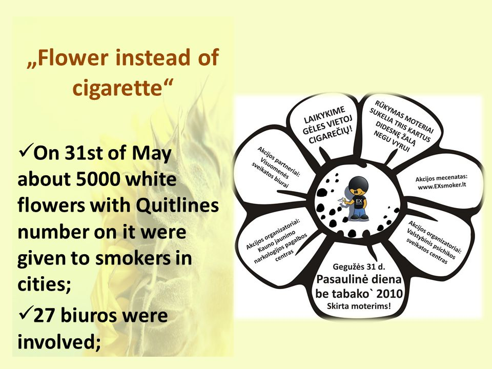 Flower instead of cigarette On 31st of May about 5000 white flowers with Quitlines number on it were given to smokers in cities; 27 biuros were involved;