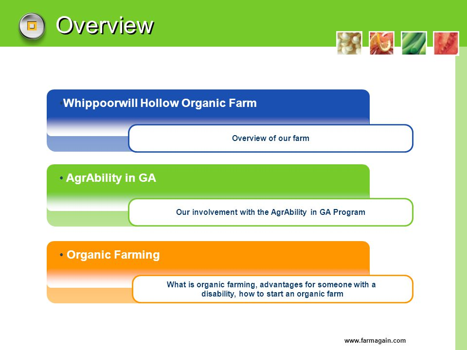 www.farmagain.com Overview Whippoorwill Hollow Organic Farm AgrAbility in GA Organic Farming Overview of our farm Our involvement with the AgrAbility
