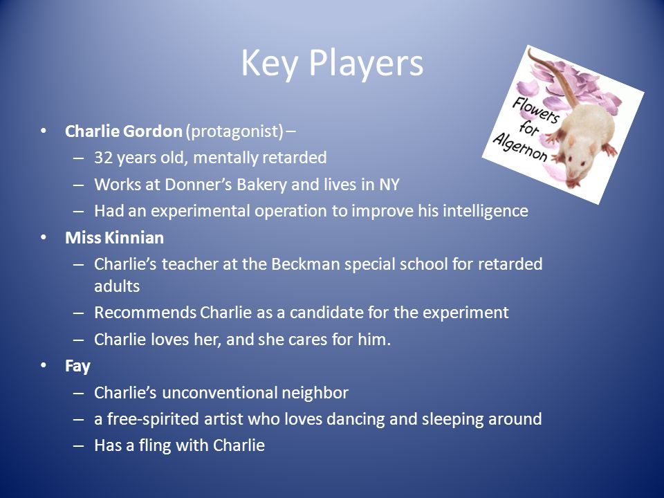 Setting New York City – Charlies Apartment – Donners Bakery – Beckman College Chicago – psychology convention