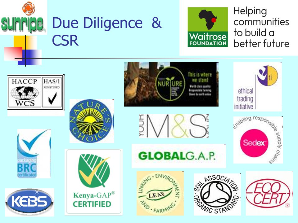 Due Diligence & CSR