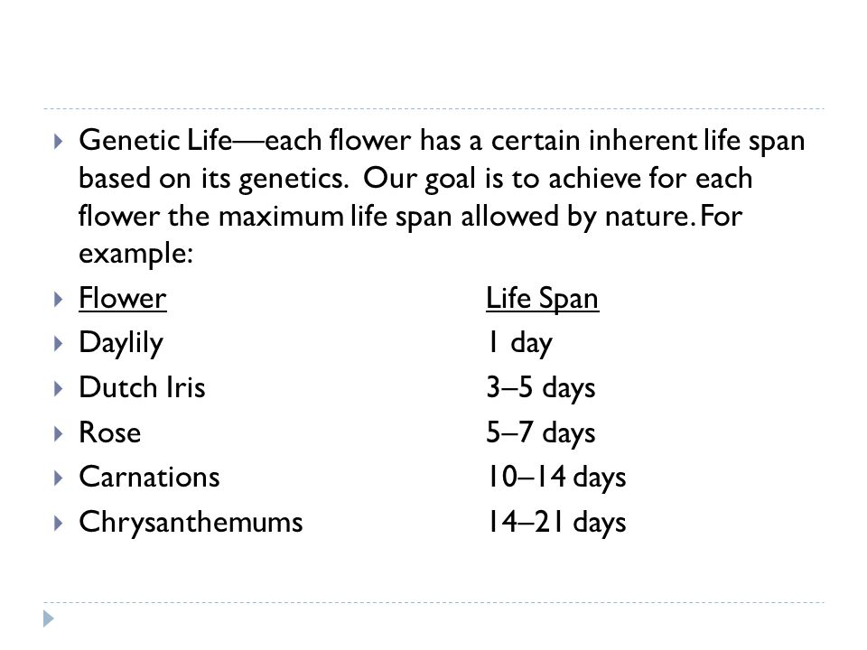 Genetic Lifeeach flower has a certain inherent life span based on its genetics. Our goal is to achieve for each flower the maximum life span allowed b
