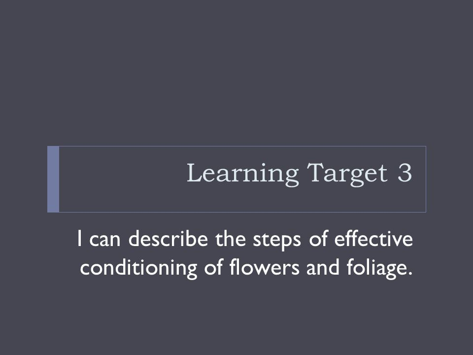 Learning Target 3 I can describe the steps of effective conditioning of flowers and foliage.