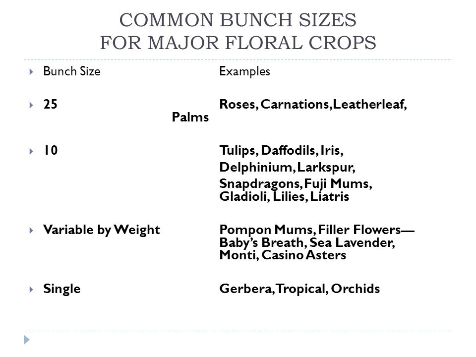 COMMON BUNCH SIZES FOR MAJOR FLORAL CROPS Bunch SizeExamples 25 Roses, Carnations,Leatherleaf, Palms 10 Tulips, Daffodils, Iris, Delphinium, Larkspur,