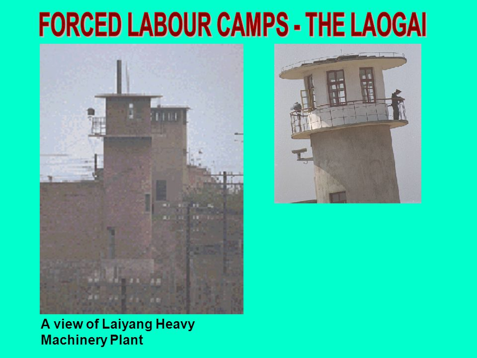 A view of Laiyang Heavy Machinery Plant