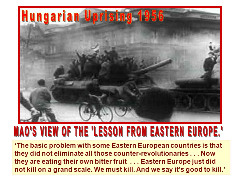 The basic problem with some Eastern European countries is that they did not eliminate all those counter-revolutionaries... Now they are eating their o