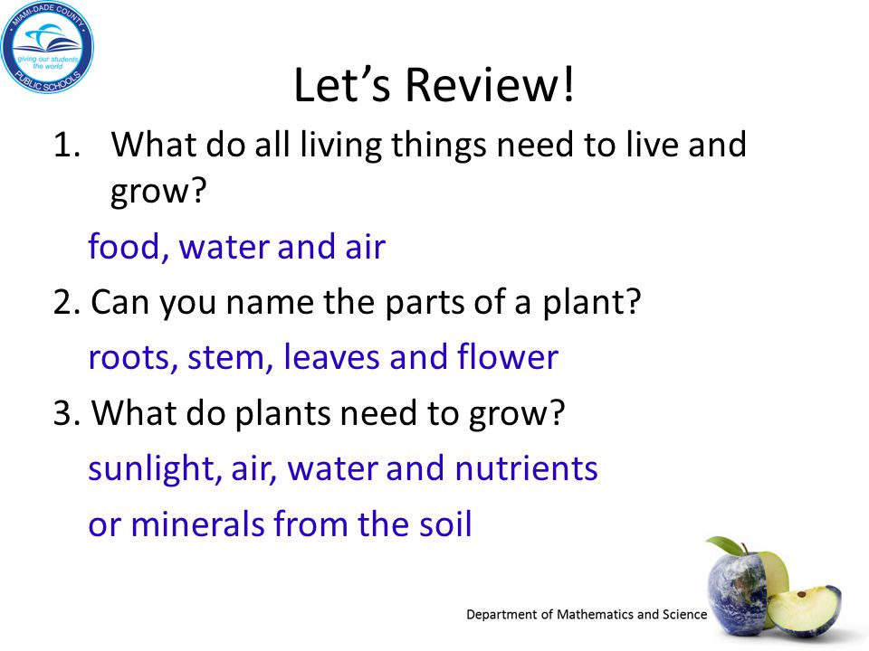 Lets Review! 1.What do all living things need to live and grow? food, water and air 2. Can you name the parts of a plant? roots, stem, leaves and flow