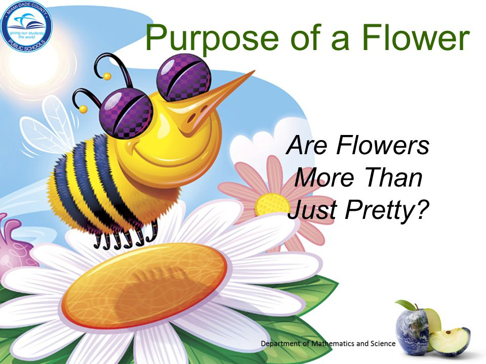 Purpose of a Flower Are Flowers More Than Just Pretty?
