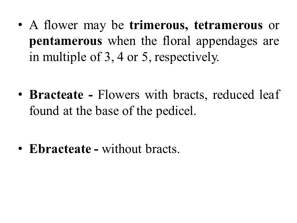 A flower may be trimerous, tetramerous or pentamerous when the floral appendages are in multiple of 3, 4 or 5, respectively.