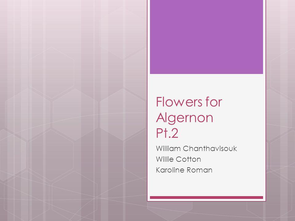 Flowers for Algernon Pt.2 William Chanthavisouk Willie Cotton Karoline Roman