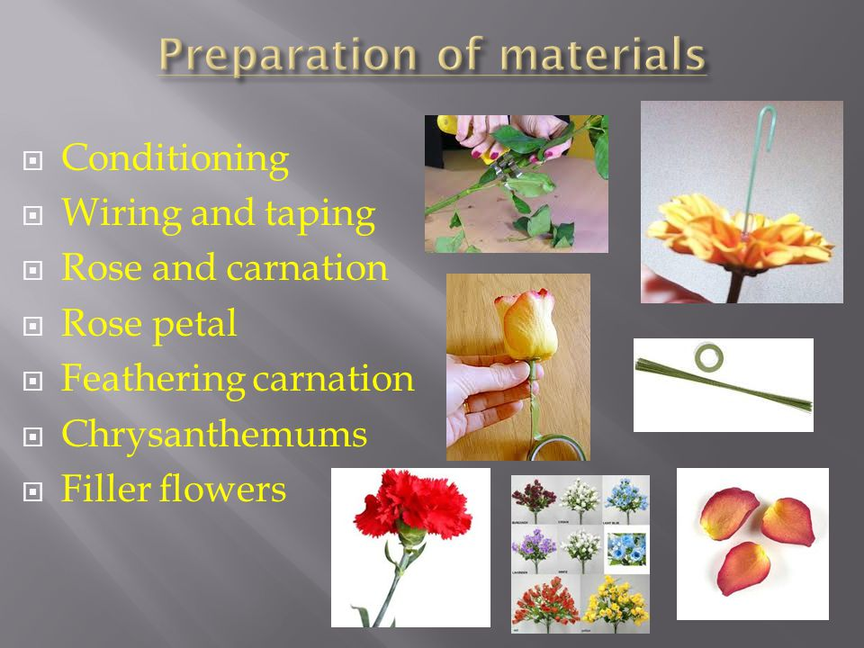 Conditioning Wiring and taping Rose and carnation Rose petal Feathering carnation Chrysanthemums Filler flowers