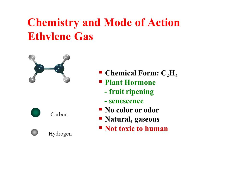 Chemistry and Mode of Action Ethylene Gas Chemical Form: C 2 H 4 Plant Hormone - fruit ripening - senescence No color or odor Natural, gaseous Not toxic to human Carbon Hydrogen