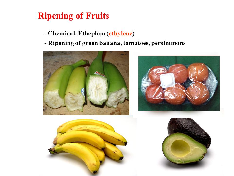 Ripening of Fruits - Chemical: Ethephon (ethylene) - Ripening of green banana, tomatoes, persimmons