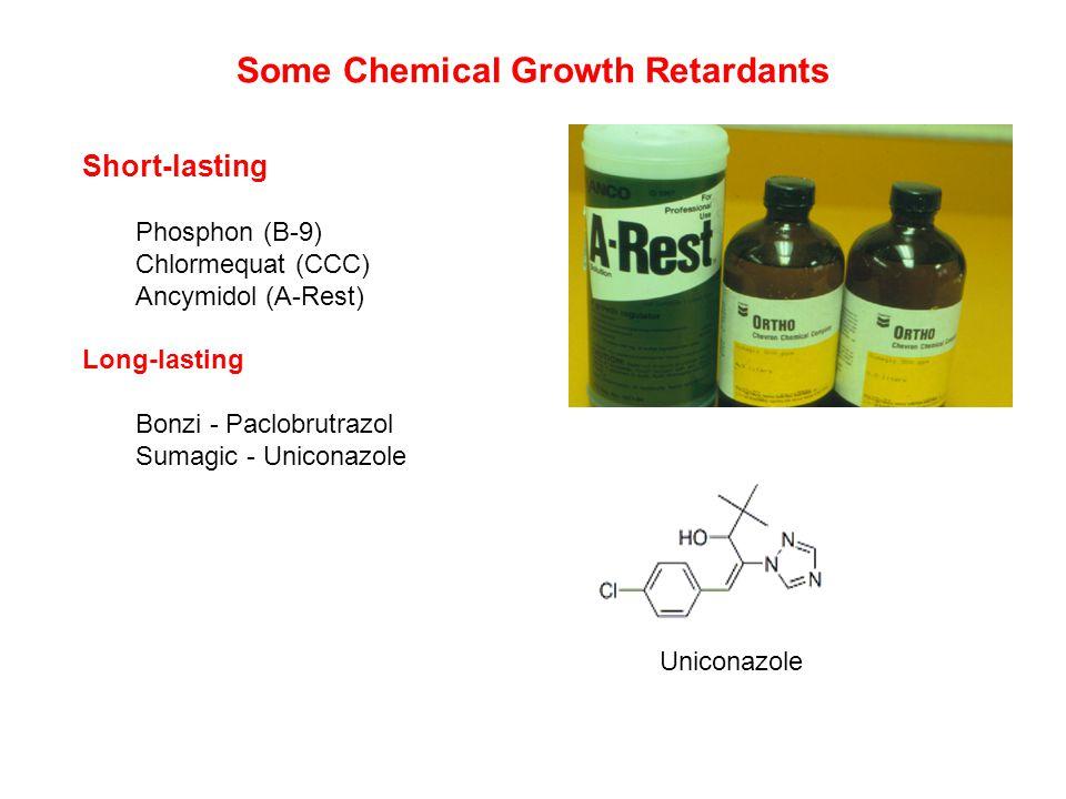 Some Chemical Growth Retardants Short-lasting Phosphon (B-9) Chlormequat (CCC) Ancymidol (A-Rest) Long-lasting Bonzi - Paclobrutrazol Sumagic - Uniconazole Uniconazole