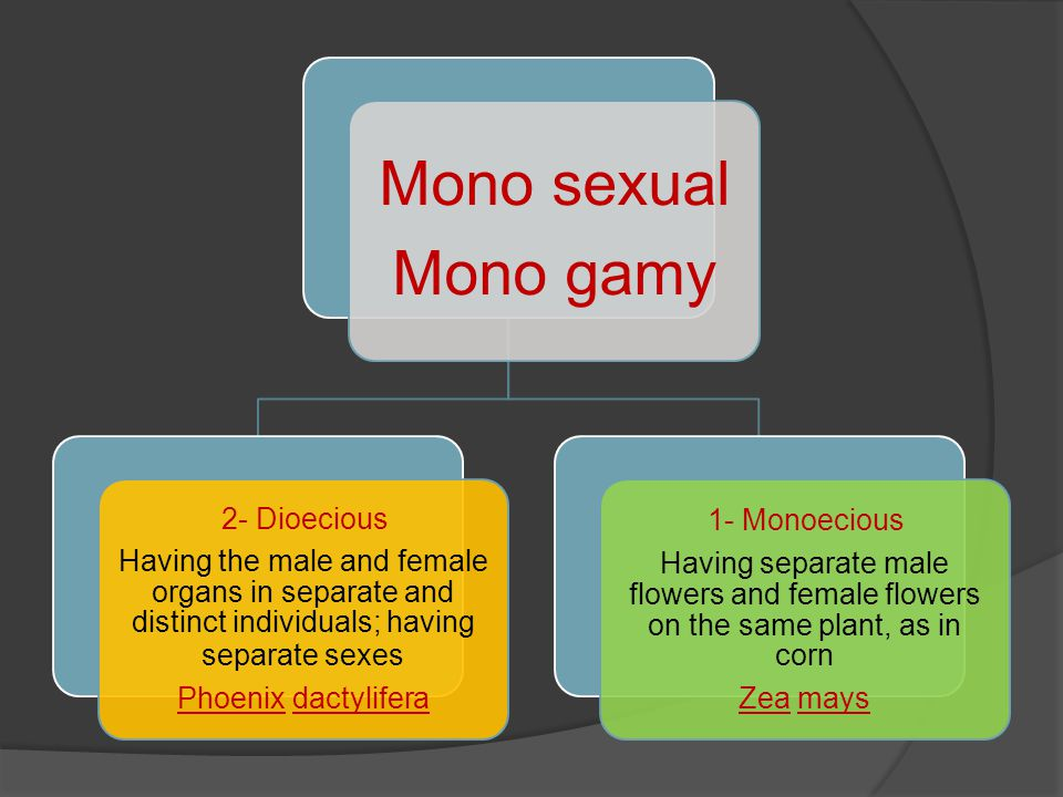 Mono sexual Mono gamy 2- Dioecious Having the male and female organs in separate and distinct individuals; having separate sexes Phoenix dactylifera 1