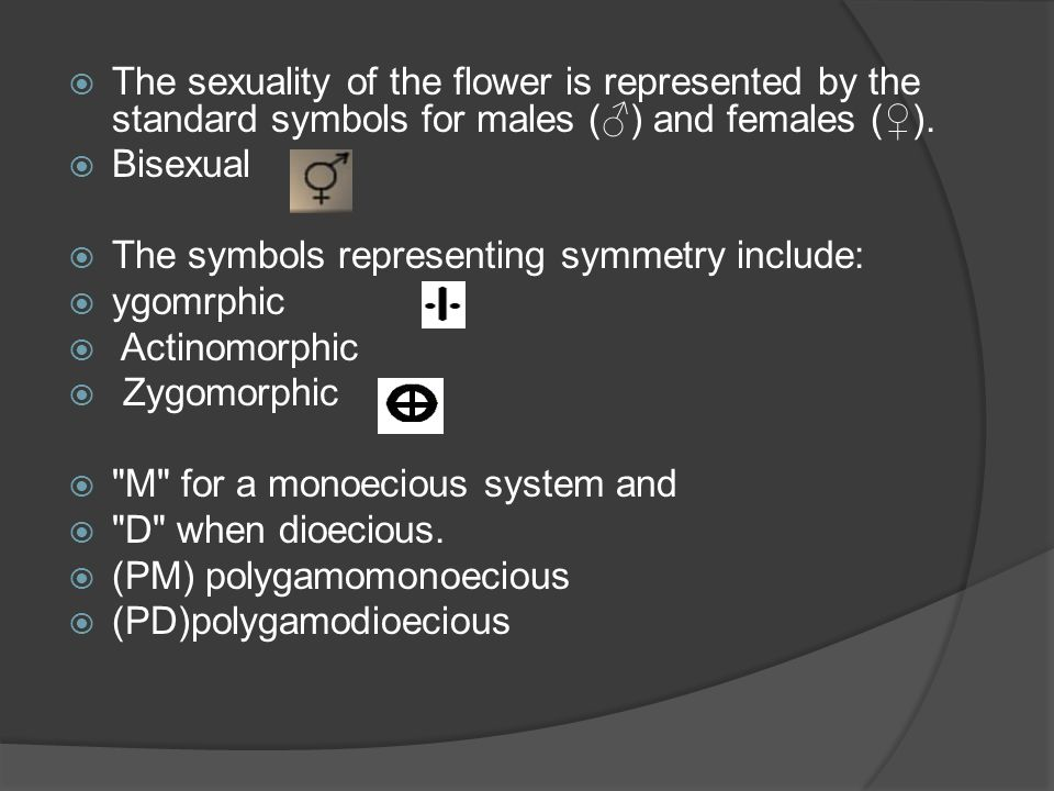 The sexuality of the flower is represented by the standard symbols for males () and females (). Bisexual The symbols representing symmetry include: yg