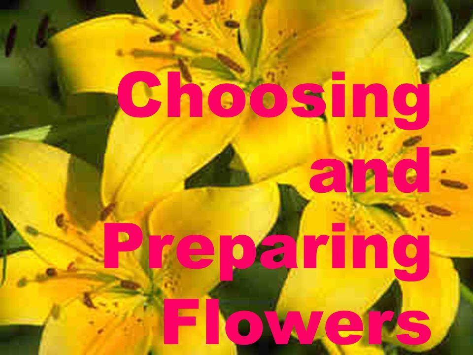 Choosing and Preparing Flowers
