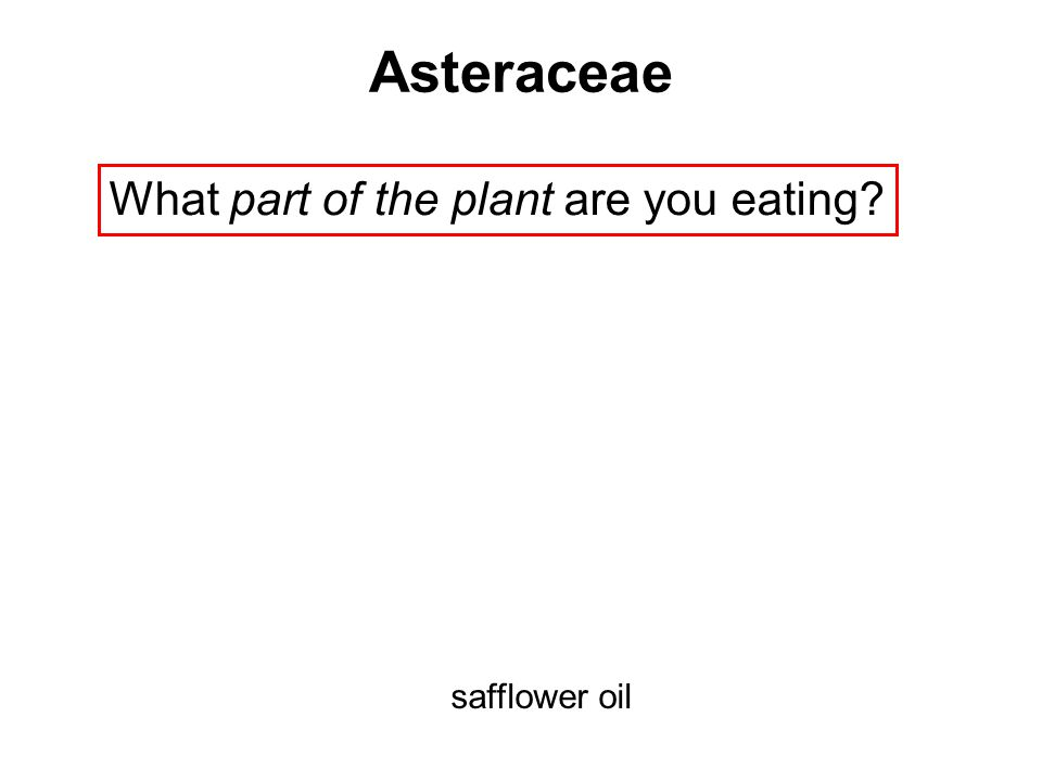 What part of the plant are you eating? safflower oil Asteraceae