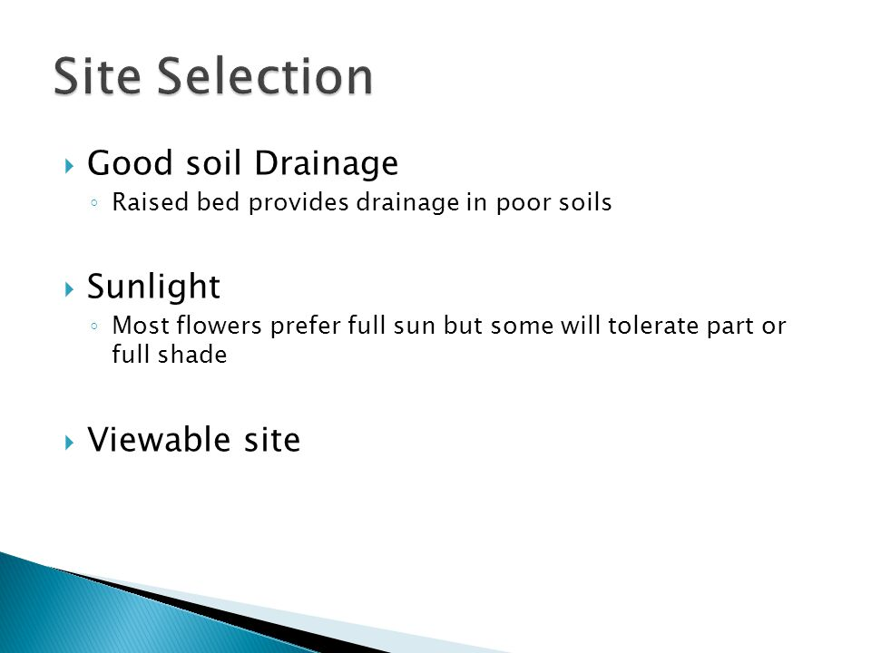 Good soil Drainage Raised bed provides drainage in poor soils Sunlight Most flowers prefer full sun but some will tolerate part or full shade Viewable site
