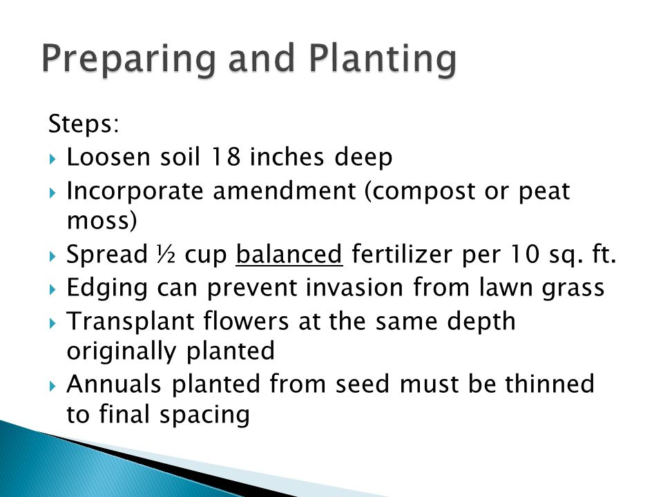 Steps: Loosen soil 18 inches deep Incorporate amendment (compost or peat moss) Spread ½ cup balanced fertilizer per 10 sq.