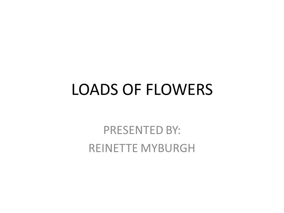 LOADS OF FLOWERS PRESENTED BY: REINETTE MYBURGH
