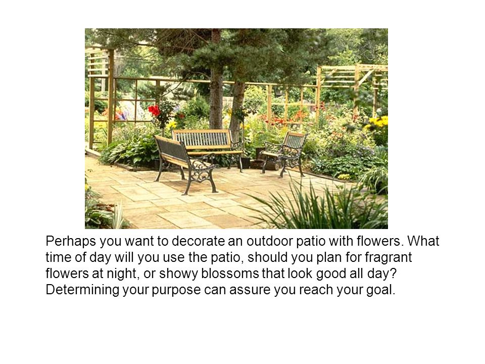 Perhaps you want to decorate an outdoor patio with flowers.