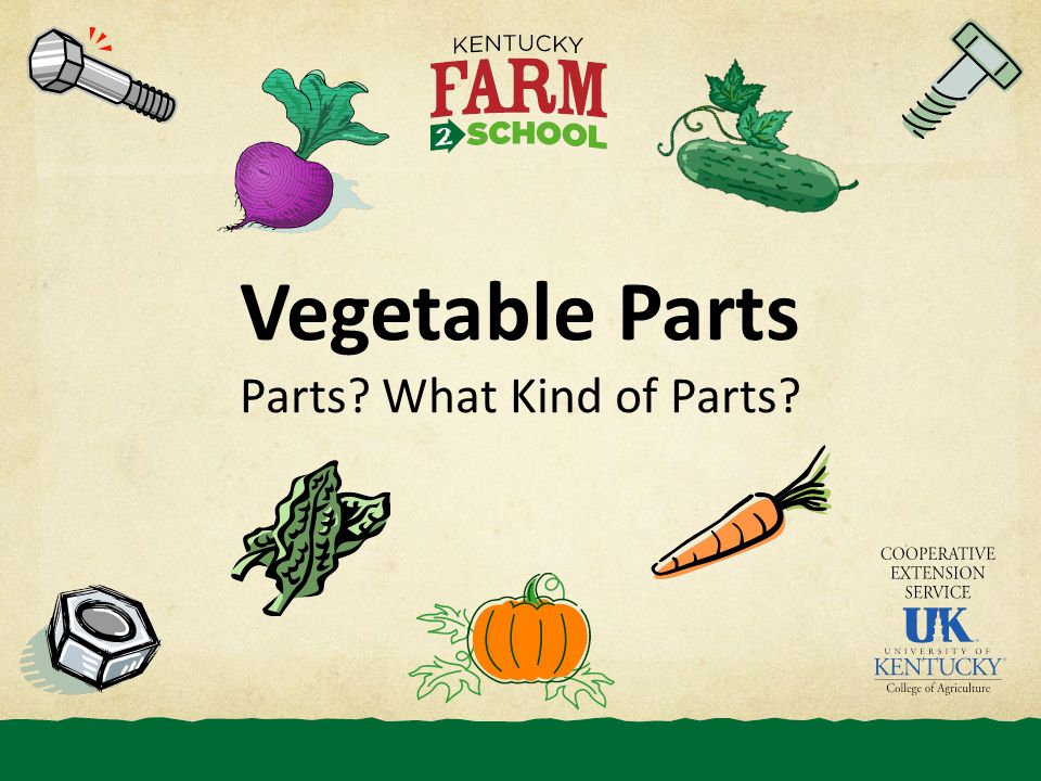 Vegetable Parts Parts What Kind of Parts