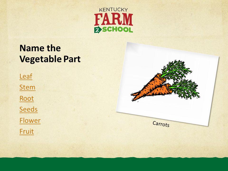 Name the Vegetable Part Leaf Stem Root Seeds Flower Fruit Carrots