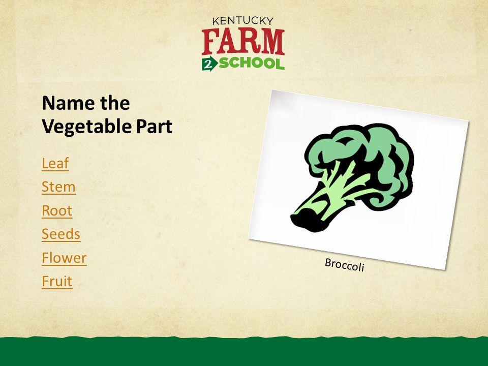 Name the Vegetable Part Leaf Stem Root Seeds Flower Fruit Broccoli