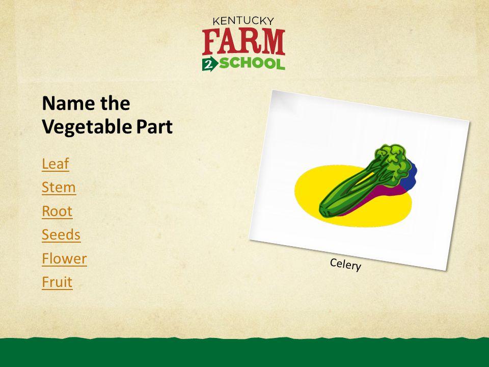 Name the Vegetable Part Leaf Stem Root Seeds Flower Fruit Celery