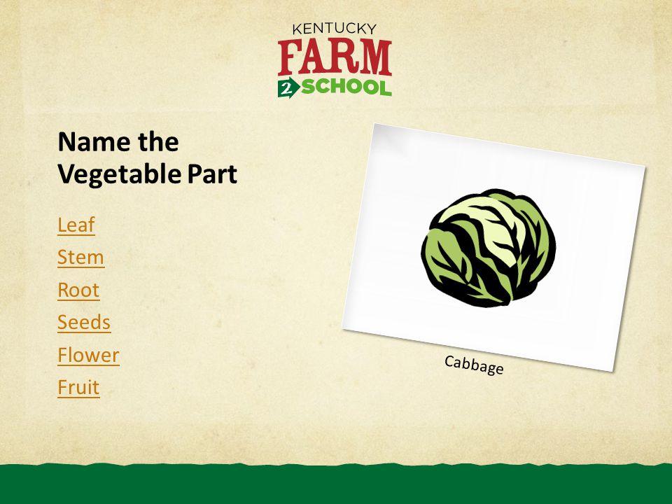 Name the Vegetable Part Leaf Stem Root Seeds Flower Fruit Cabbage