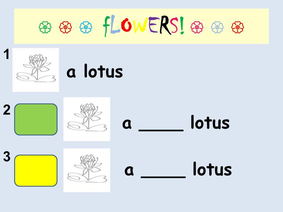 fLOWERS! 1 2 3 a lotus a ____ lotus