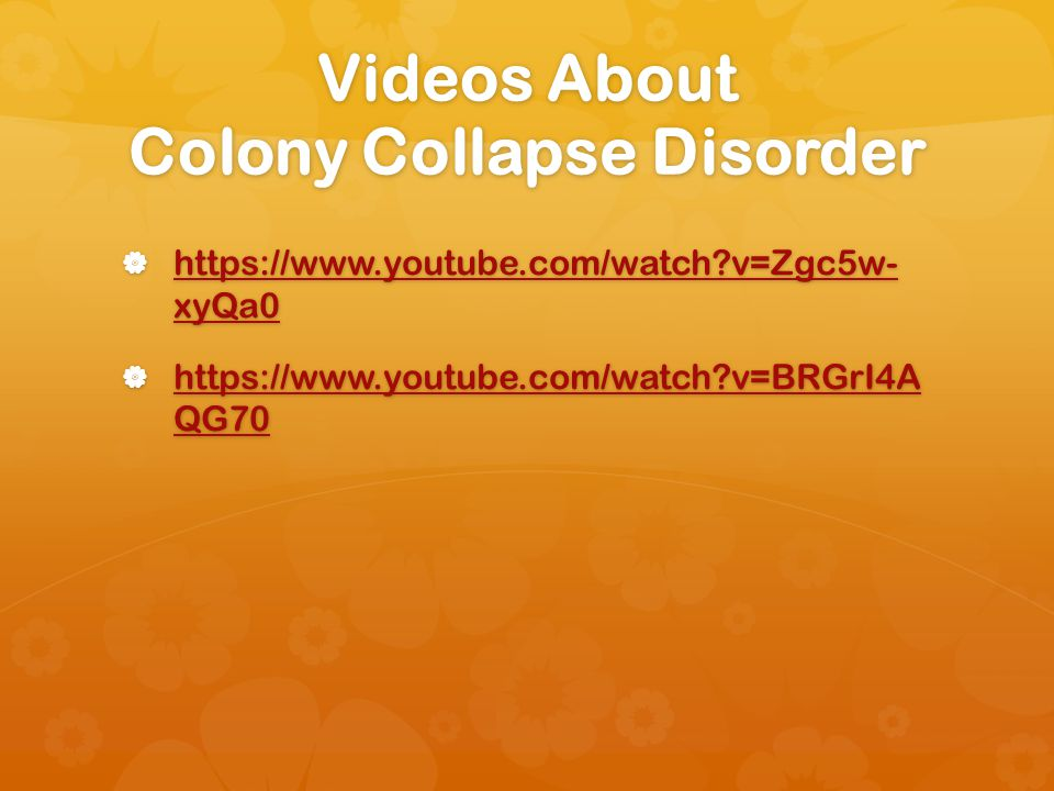 Videos About Colony Collapse Disorder https://www.youtube.com/watch v=Zgc5w- xyQa0 https://www.youtube.com/watch v=Zgc5w- xyQa0 https://www.youtube.com/watch v=Zgc5w- xyQa0 https://www.youtube.com/watch v=Zgc5w- xyQa0 https://www.youtube.com/watch v=BRGrI4A QG70 https://www.youtube.com/watch v=BRGrI4A QG70 https://www.youtube.com/watch v=BRGrI4A QG70 https://www.youtube.com/watch v=BRGrI4A QG70