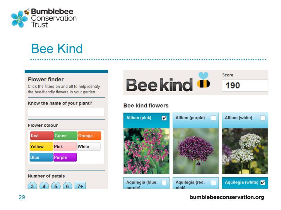 Bee Kind 29