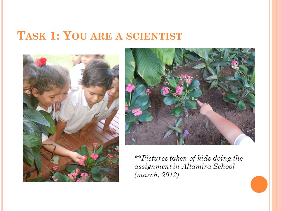 T ASK 1: Y OU ARE A SCIENTIST **Pictures taken of kids doing the assignment in Altamira School (march, 2012)