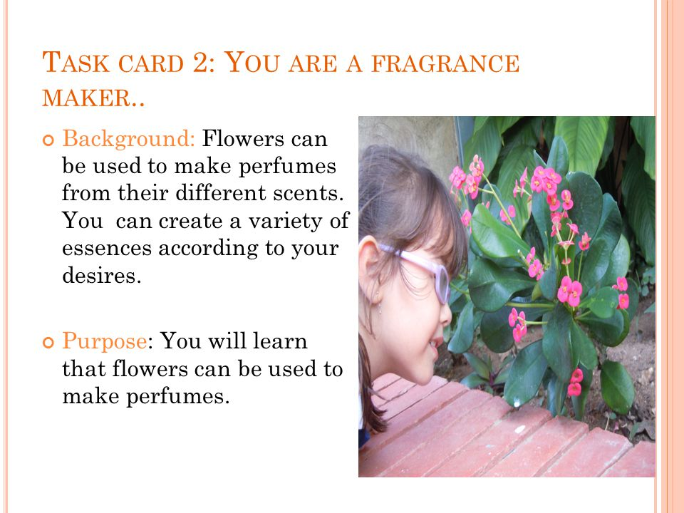 T ASK CARD 2: Y OU ARE A FRAGRANCE MAKER..