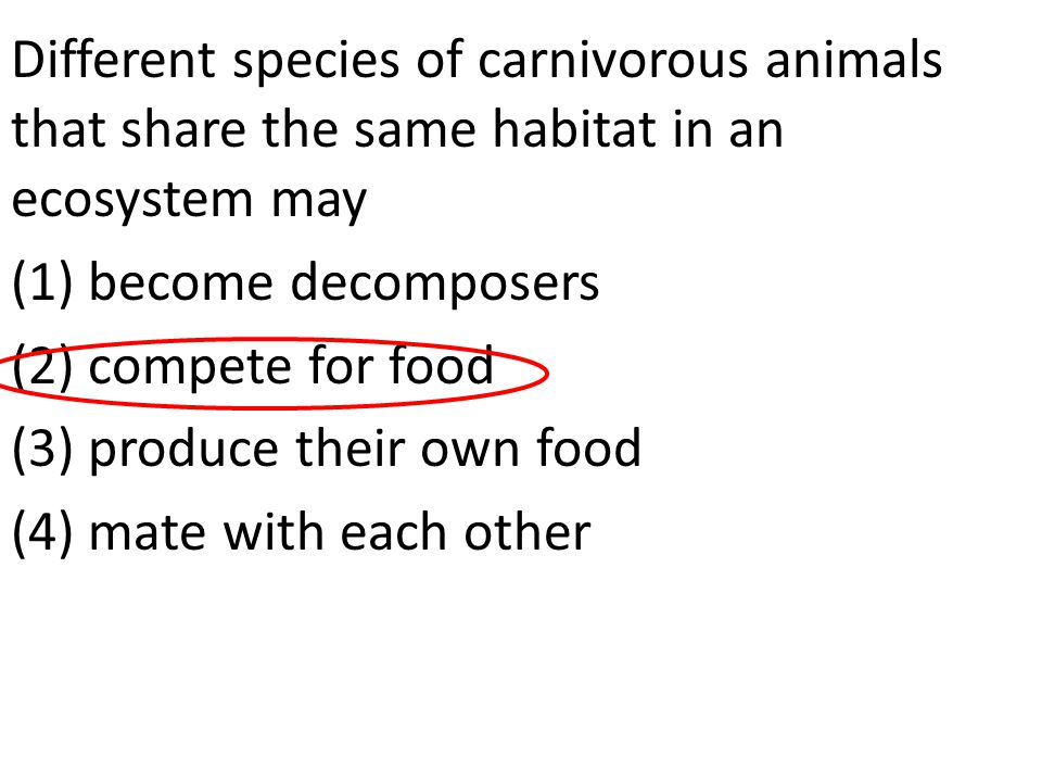 Different species of carnivorous animals that share the same habitat in an ecosystem may (1) become decomposers (2) compete for food (3) produce their