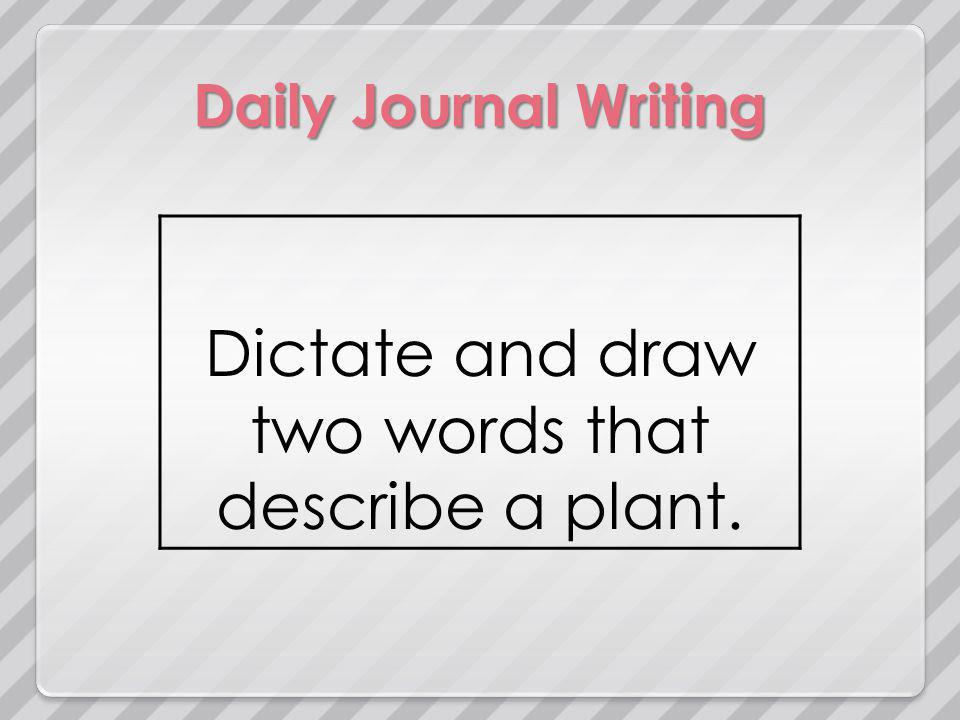 Daily Journal Writing Dictate and draw two words that describe a plant.