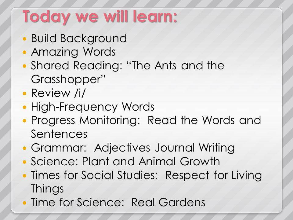 Today we will learn: Build Background Amazing Words Shared Reading: The Ants and the Grasshopper Review /i/ High-Frequency Words Progress Monitoring: Read the Words and Sentences Grammar: Adjectives Journal Writing Science: Plant and Animal Growth Times for Social Studies: Respect for Living Things Time for Science: Real Gardens