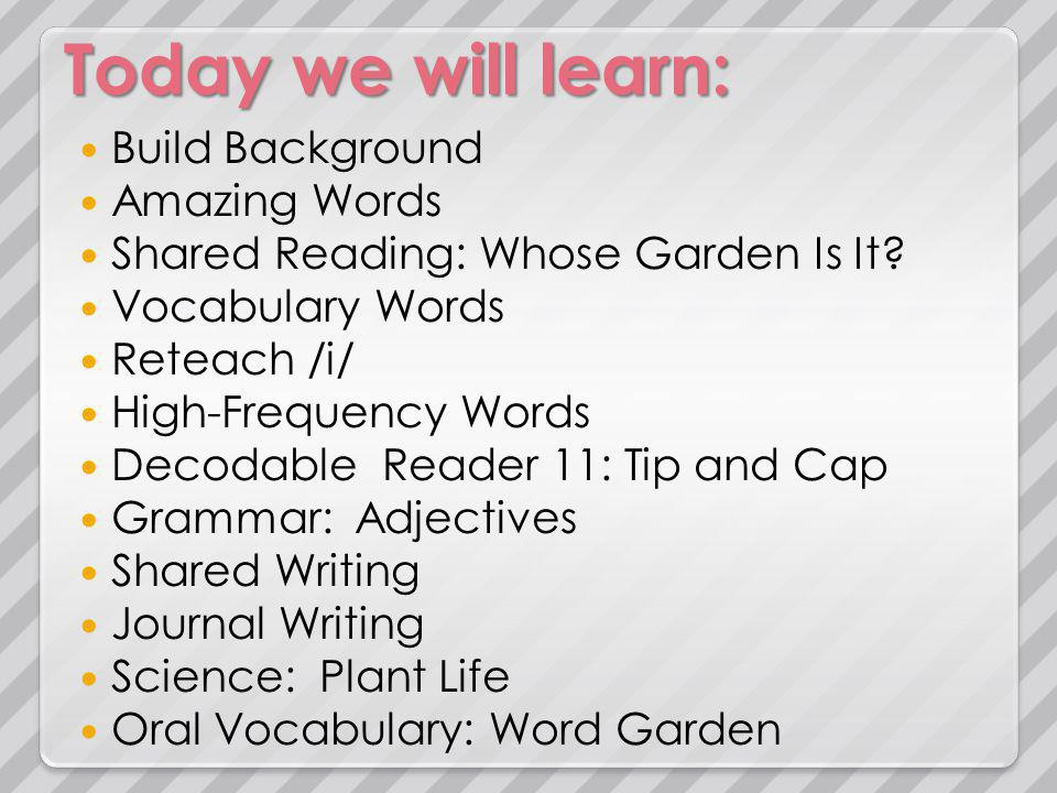 Today we will learn: Build Background Amazing Words Shared Reading: Julius Review /i/ High-Frequency Words Decodable Reader 12: Tim and Sam Grammar: Adjectives Shared Writing Journal Writing Science: Garden Mural Math: Patterns