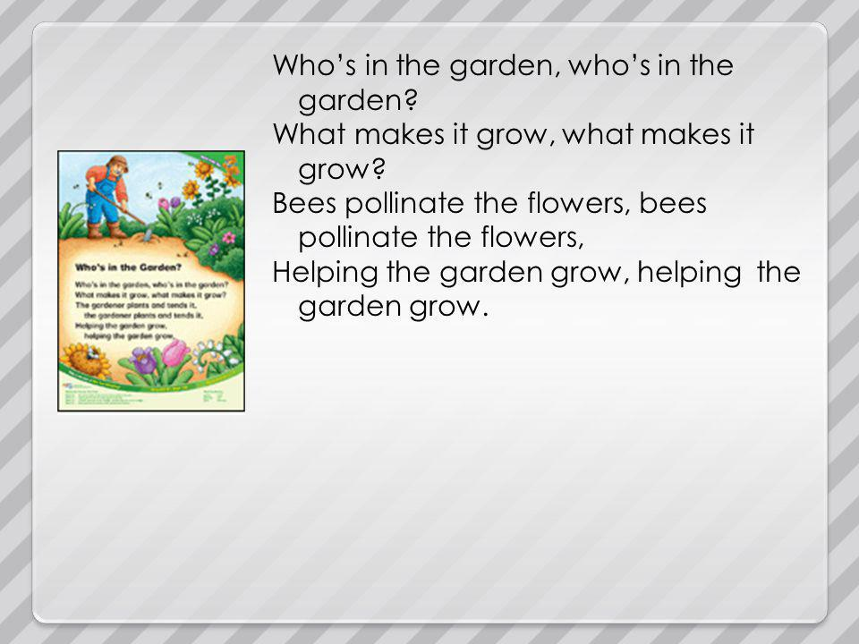 Whos in the garden, whos in the garden .What makes it grow, what makes it grow.