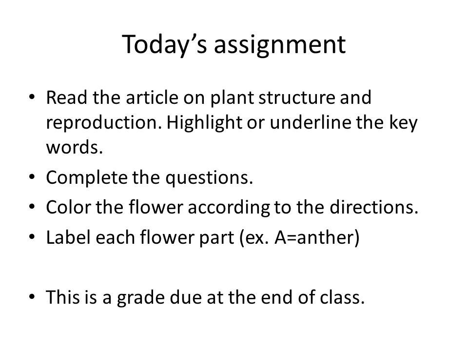 Todays assignment Read the article on plant structure and reproduction. Highlight or underline the key words. Complete the questions. Color the flower