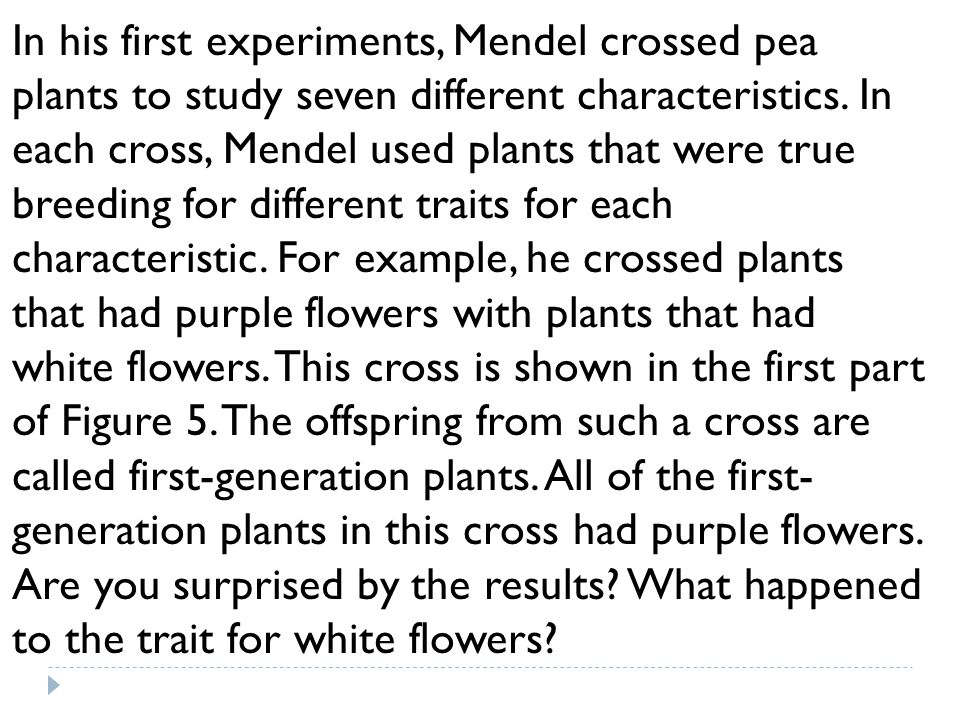 In his first experiments, Mendel crossed pea plants to study seven different characteristics. In each cross, Mendel used plants that were true breedin