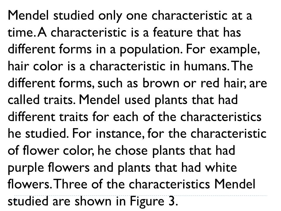 Mendel studied only one characteristic at a time. A characteristic is a feature that has different forms in a population. For example, hair color is a
