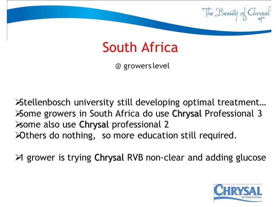South Africa @ growers level Stellenbosch university still developing optimal treatment… Chrysal Some growers in South Africa do use Chrysal Professio