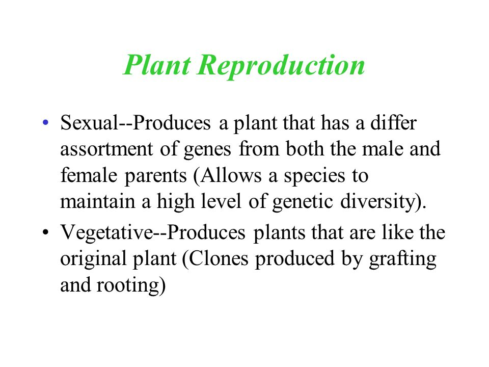 Plant Reproduction Sexual--Produces a plant that has a differ assortment of genes from both the male and female parents (Allows a species to maintain