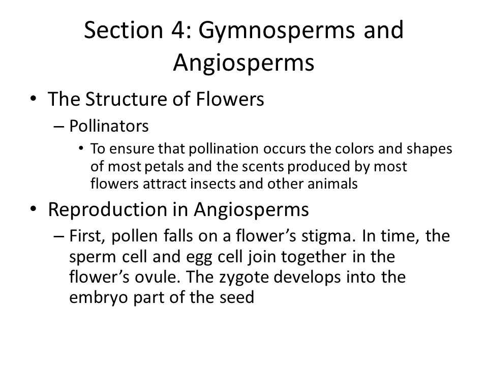 Section 4: Gymnosperms and Angiosperms The Structure of Flowers – Pollinators To ensure that pollination occurs the colors and shapes of most petals a